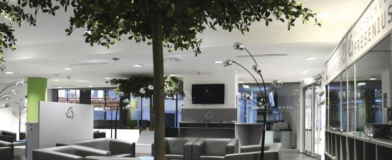 HS Fresenius Köln Lounge